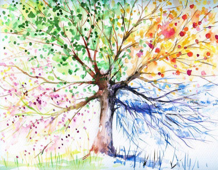 Four Seasons Tree Wall Mural Pixers We Live To Change