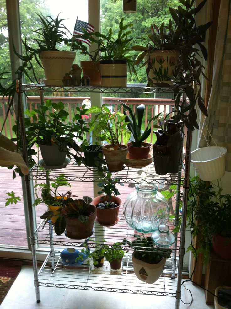 Bakers Rack Is Now A Multi Level Plant Rack Repurposed