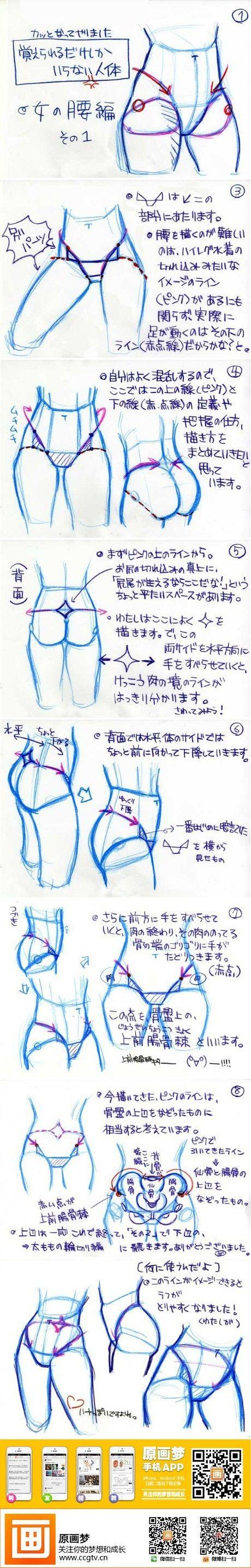 @原画梦官网 【基础教程】女性の腰の描き...