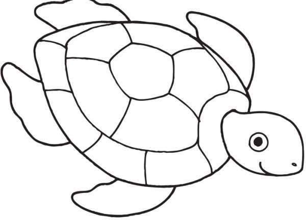 Turtle Sea Black And White Turtle Drawing Turtle Coloring Pages Turtle Outline