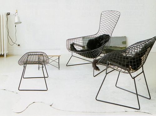 Harry Bertoia Mid Century Genius, Sculptor, Furniture Designer Etc, Etc.  Find This Pin And More On Modern Classic Lounge Chairs ...