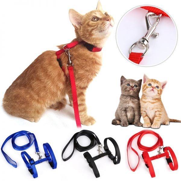Long High Quality Nylon Cat Leash