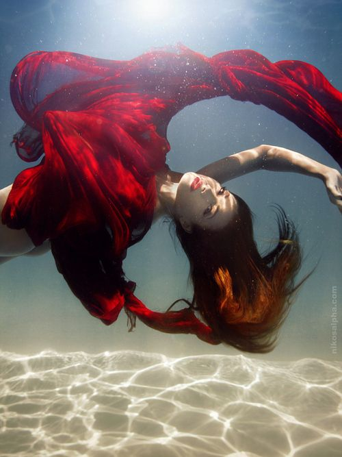 A new area I'm going to branch into - underwater photography.