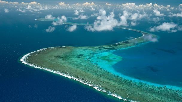 great barrier reef, coral sea, australia