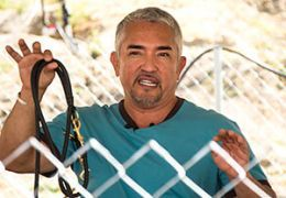Cesar Millan at a fence holding a dog leash
