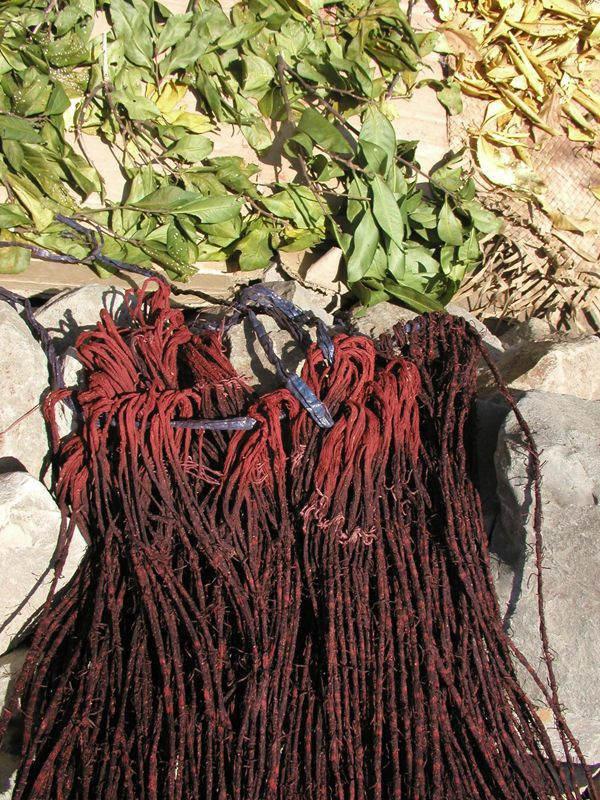 Morinda dyed threads with Symplocos leaves