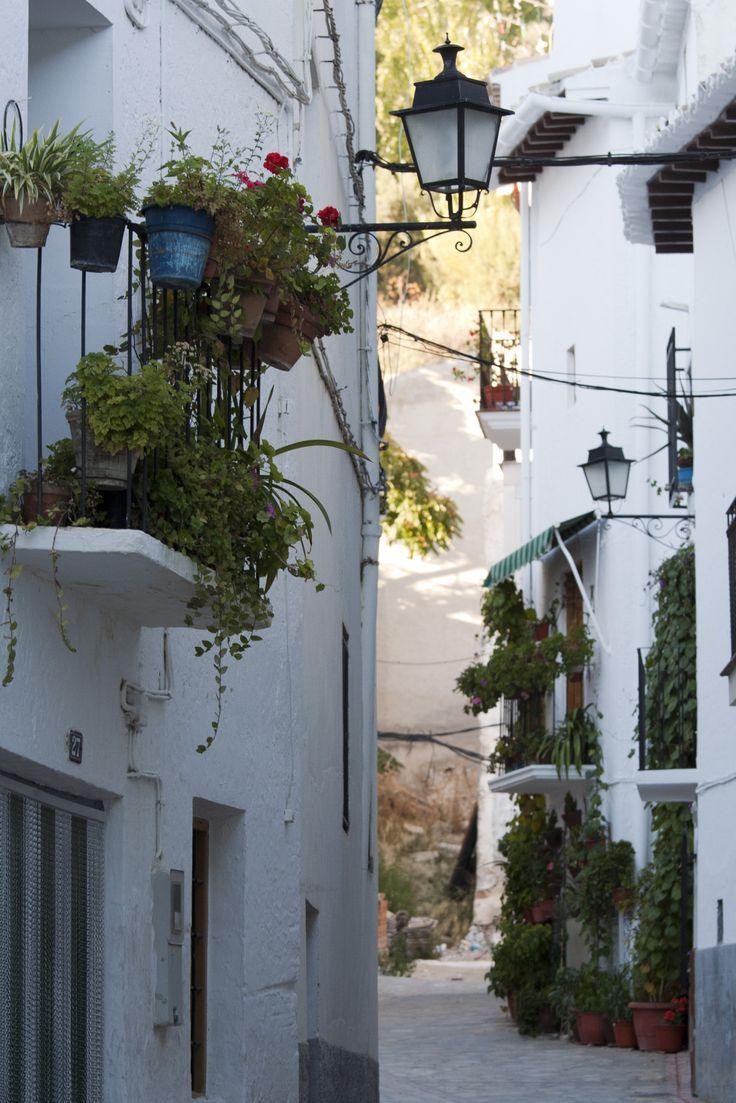 Calle Peña