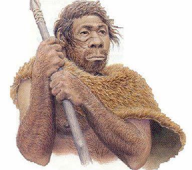 hominido