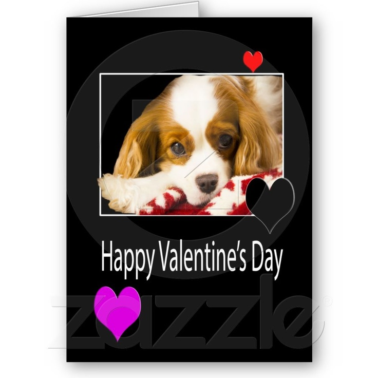 Happy Valentine's Day With King Charles Spaniel from ...