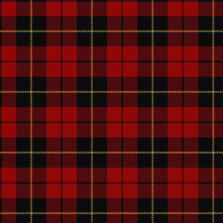 ~+~+~+~ Wallace Tartan ~+~+~+~  In the 12th century Richard Wallace obtained lands at Riccarton, Ayrshire.  The Wallaces refused to do homage to Edward I of England and Sir William, who led a band of patriots, harried the English, and his constant raids on their fortresses made them hate and fear him. His bravery and leadership inspired others to support his struggle for Scottish independence. He was betrayed to the English and taken to London, where he was executed in 1305.