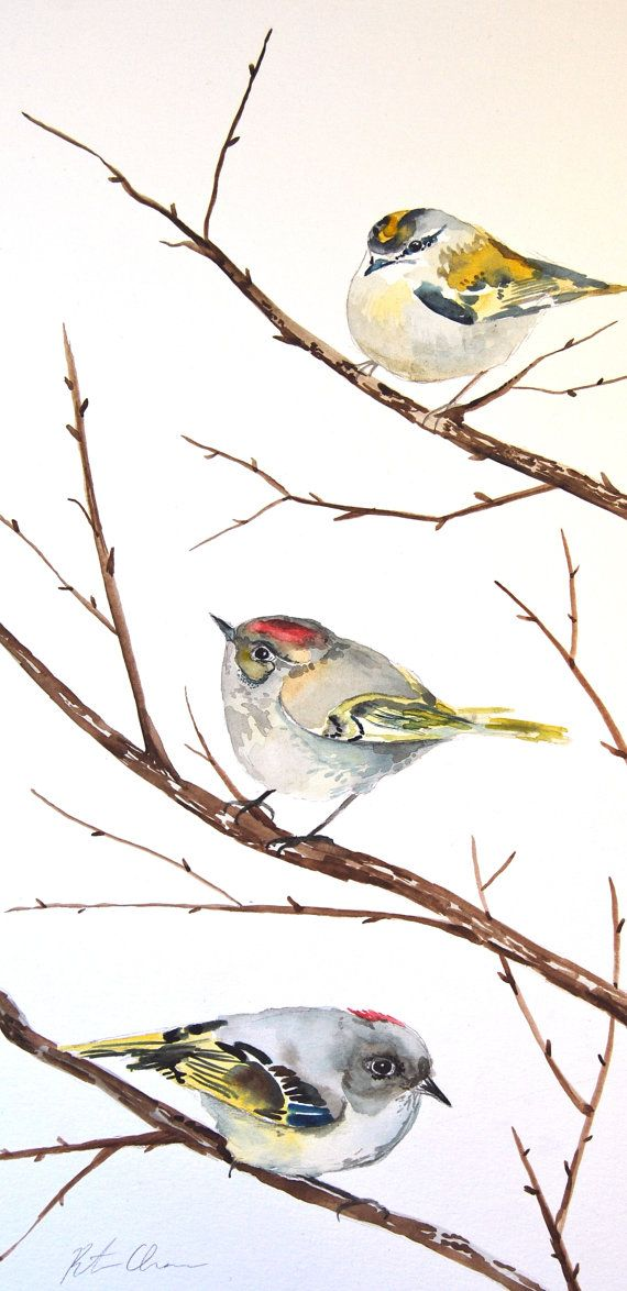 "Watercolor Painting, Original, Bird Painting, Kinglets, 9""x17.5"""