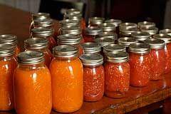canning-garden-veggies vs. freezing