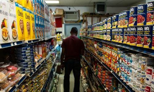 Food stamp rolls drop dramatically in states that restore work requirements