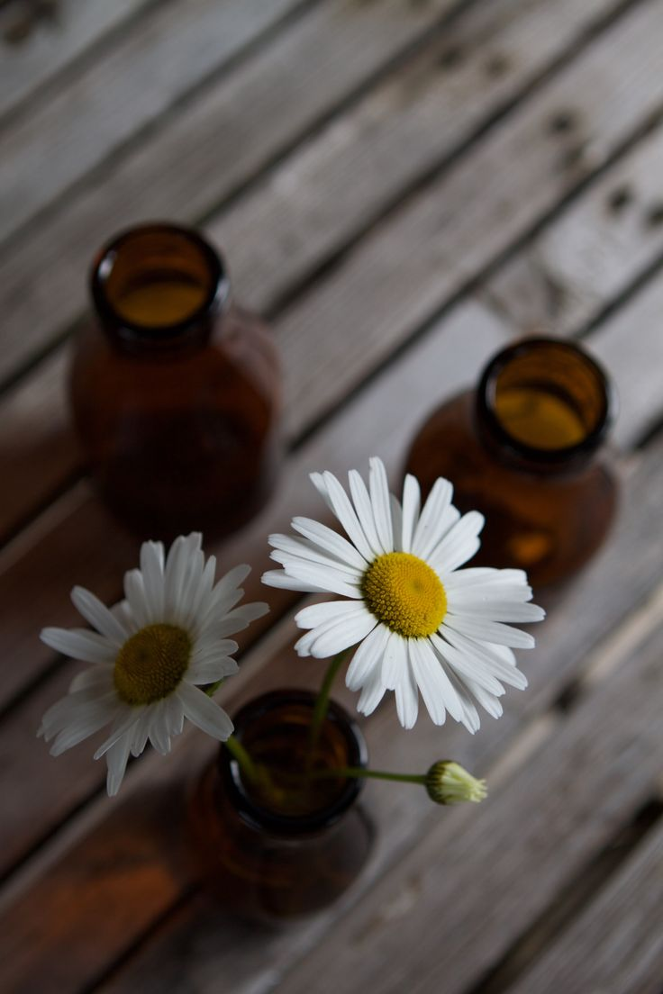 Vintage old cream bottles // Brown glass // Daisies // Old wood //  Ruskea lasi // vanhat kermapullot // Table decor // Home decor //  Photo: Pala saaristoa