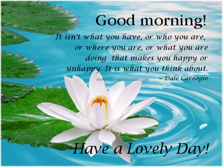Lovely Monday Morning Quotes With Images To Share