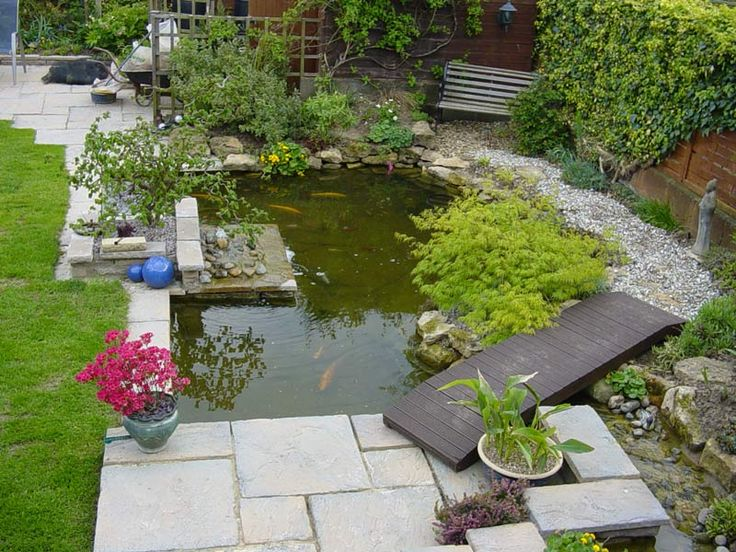 Best 25 koi pond design ideas on pinterest koi fish for Fish pond construction and design