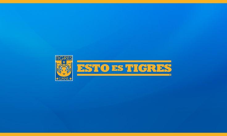 Esto es TIGRES (azul)