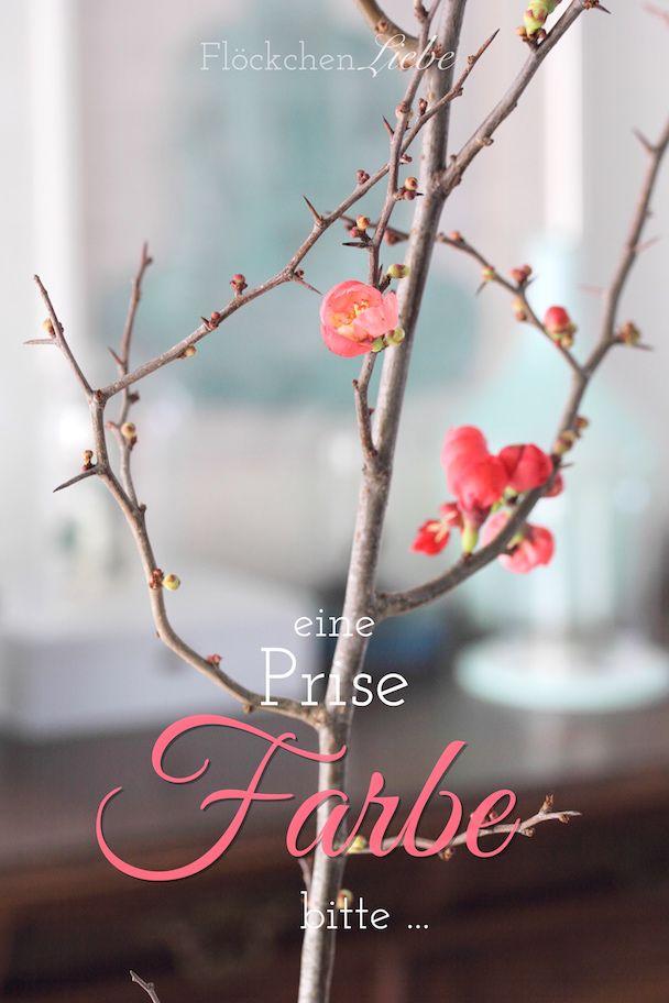Sturmtief Friederike, Flowerday, Quittenzweig, Kiefernzweig, Farbe, Ani Design Handmade, Flöckchenliebe, eine Prise Farbe , Januar, Instagram