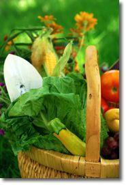 Fancy Vegetable Gardening Tips Vegetable Garden Plans Ideas and Designs website
