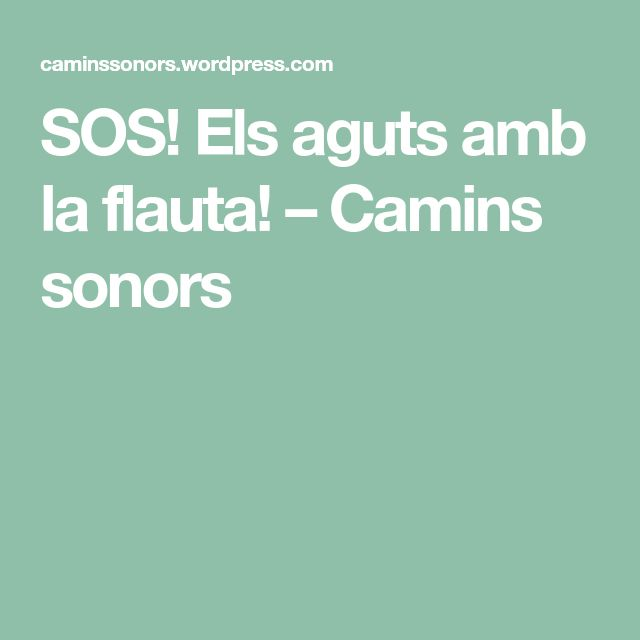 SOS! Els aguts amb la flauta! – Camins sonors
