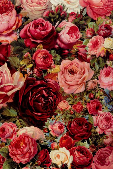 These Victorian roses remind me of the cards my mama would give me for Valentine's Day :)