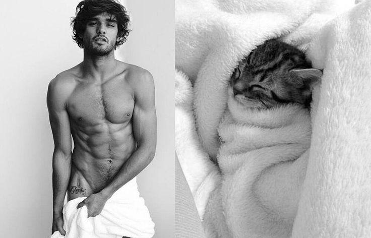 foto-uomini-sexy-gatti-pose-simili-des-hommes-des-chatons-24.jpg 1.000×642 pixel