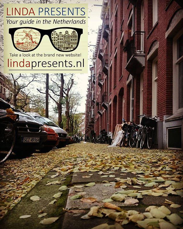 Storm in Amsterdam! It's snowing leaves!  WWW.LINDAPRESENTS.NL  #yourlocalguide #amsterdamguide #storm #amsterdam #debaarsjes #autumn #snow #leaves #walkingtour #iamsterdam