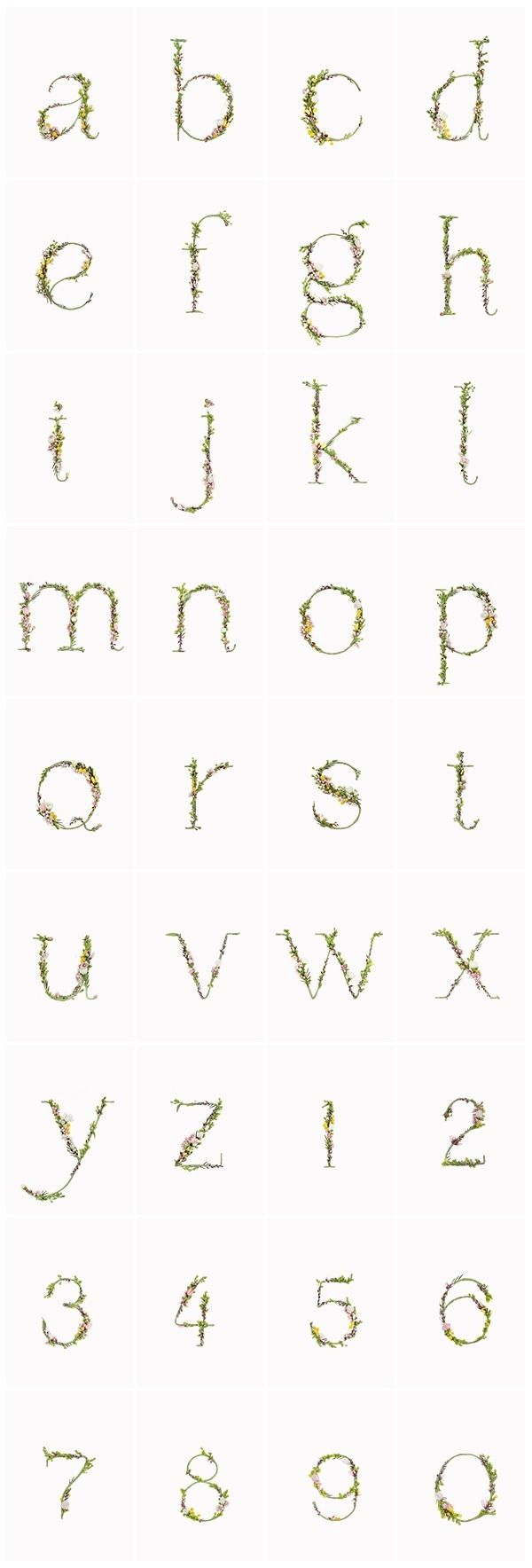 Alice Mouoru, an art director at Zero agency in Moscow, painstakingly created the most beautifulalphabet set using parts of flowers and plants.         All images© Zero Agency. V…