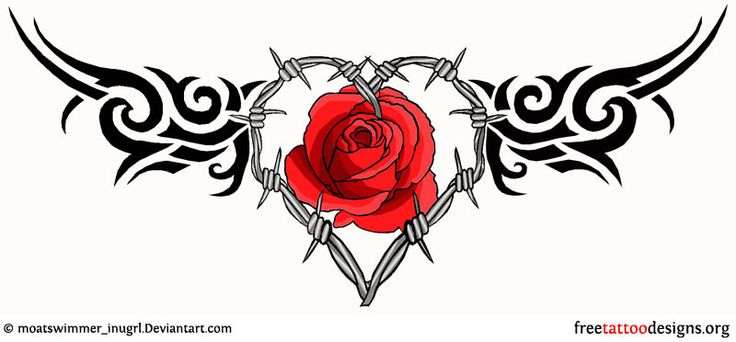 This is the one im looking for! i want this on my lower rid cage in front