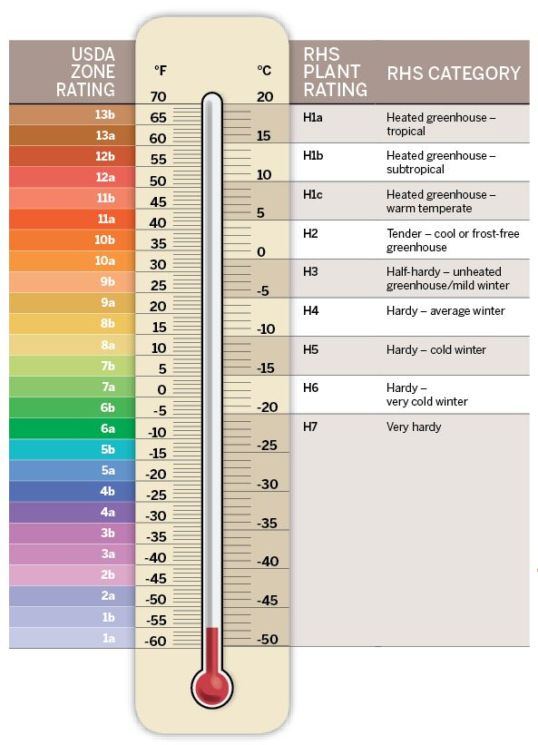 Plant hardiness ratings | Gardens Illustrated