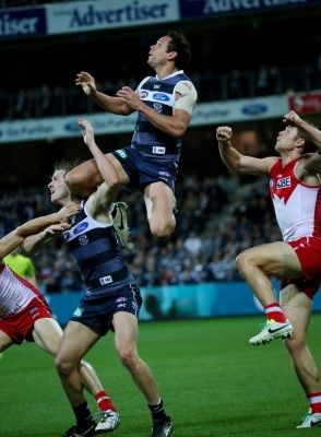 Cats v Swans, August 24, 2013 - Photo Gallery | Geelong Advertiser | geelongadvertiser.com.au