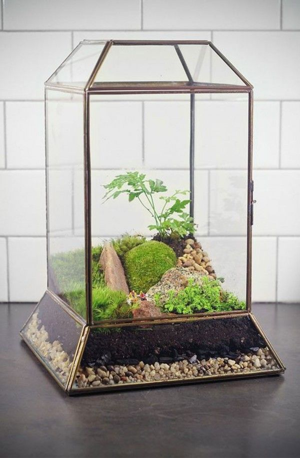 Cool Rectangle Shape Closed Terrarium Ideas With Cream Gravel Color And Black Ground Color With Dark Grey Flooring Color Also White Brick Style Wall Color Decoration Unique Cool Errarium Ideas For Small Plant