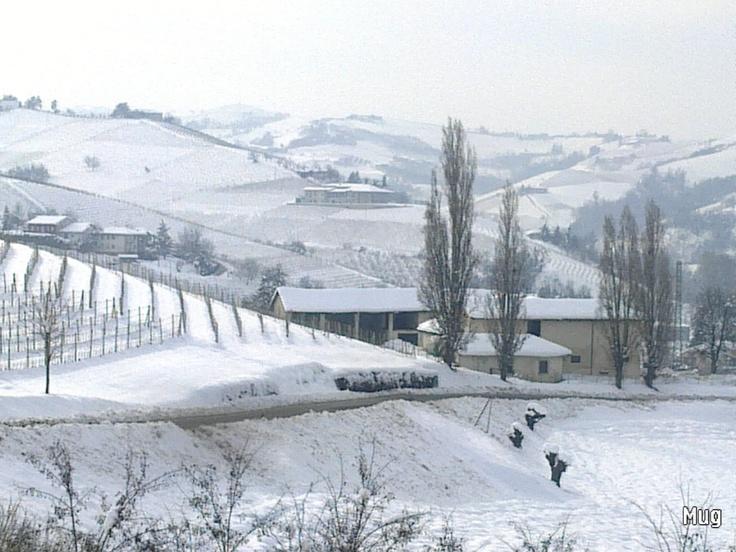 Winter in Langhe (Italy)  Photo@Barbara Mugnai