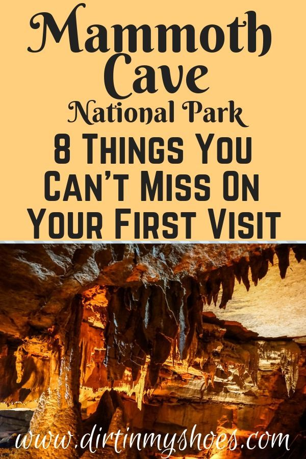 8 Things You Can't Miss On Your First Visit to Mammoth Cave
