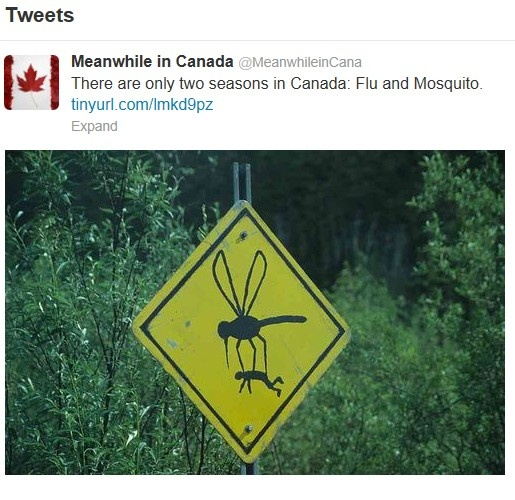 2 seasons in canada........flu & mosquito!