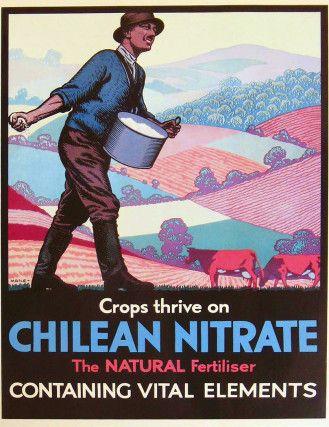 Cartel, Chilean Nitrate circa 1920, Biblioteca Nacional de Chile. Iquique.