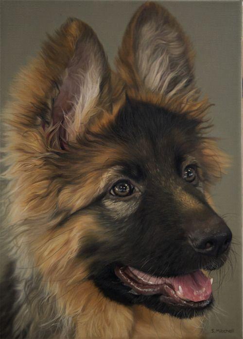 "awwww-cute: "" My oil painting of a fellow Redditor's pet dog, I hope you like it. (Source: http://ift.tt/2boqzu3) """