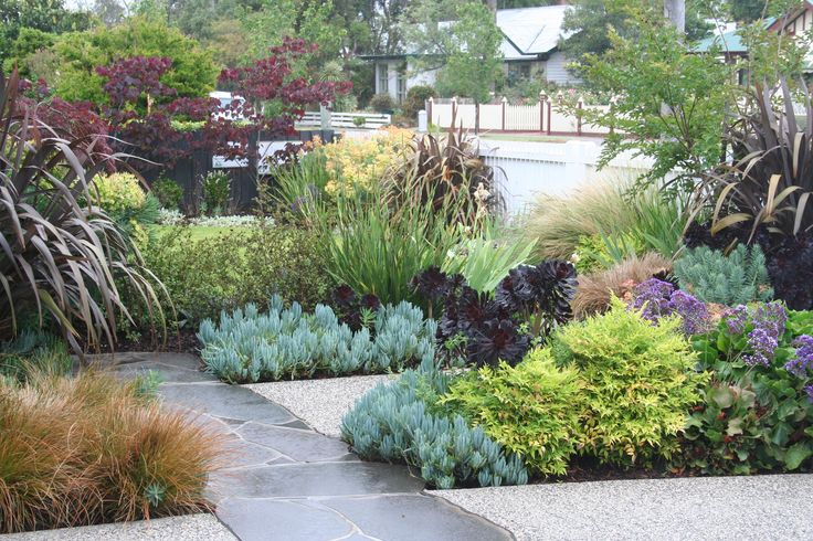 So much lovely colour from foliage plants. www.rpgardendesign.com.au