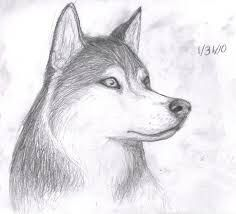 Videos Of How To Draw Cute Dogs