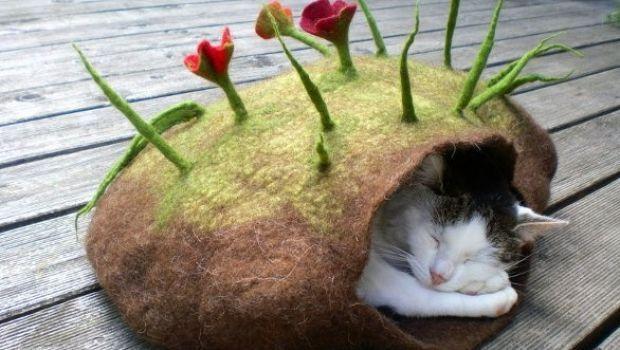Katzenhoehle, cucce per gatti in feltro