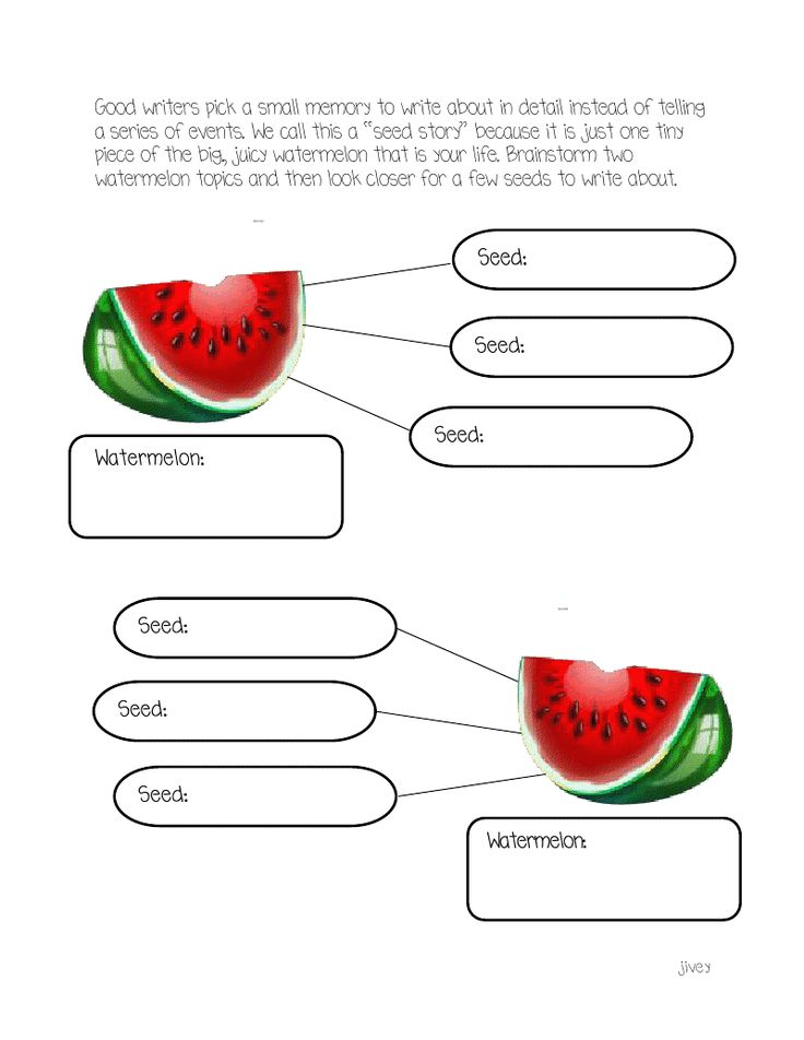 Writing Mini-Lessons on seed stories - with graphic organizer