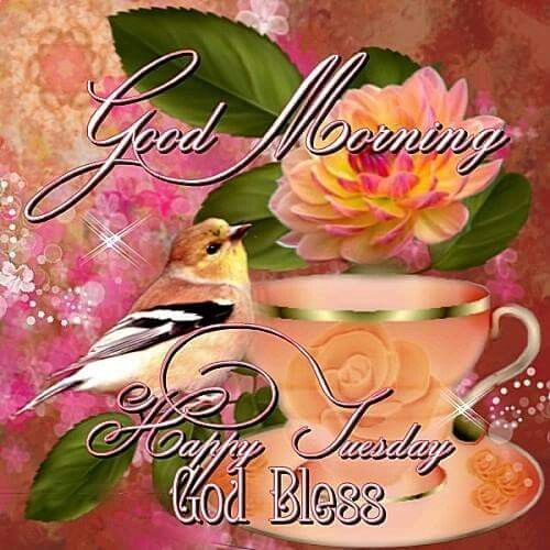 Good Morning, Happy Tuesday, God Bless good morning ~