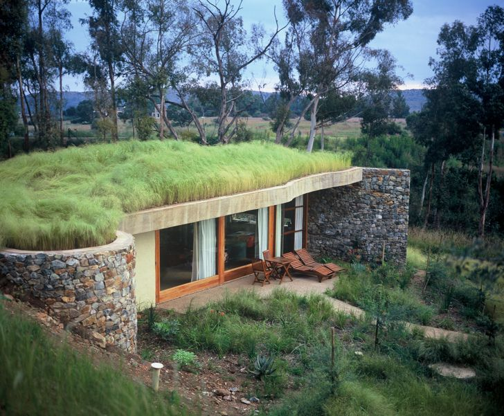 fantastic green roof in South Africa