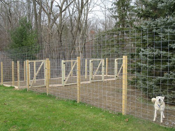Dog run design thread need ideas for dog run raiden for Dog run fence home depot