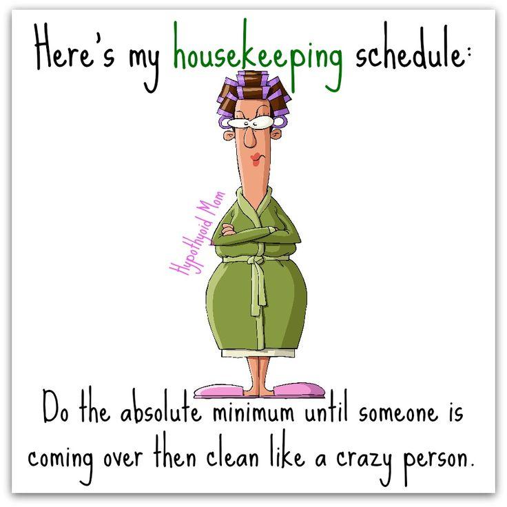 Funny Housework Memes : Best i hate housework images on pinterest funny