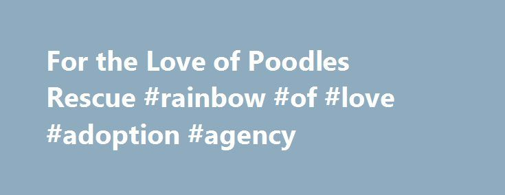 For the Love of Poodles Rescue #rainbow #of #love #adoption #agency http://virginia-beach.remmont.com/for-the-love-of-poodles-rescue-rainbow-of-love-adoption-agency/  WHOLE FOODS IN GLEN ALLEN, VA ADDRESS NOTED BELOW NEXT ADOPTION EVENT SUNDAY, May 28, 2017 FROM 11 AM TO 3 PM HOPE TO SEE YOU THEN. Remember the first step in adoption with us is to fill out an application. Once approved, you will be contacted to discuss next steps and meeting with dog/s you may be interested in. All our dogs…