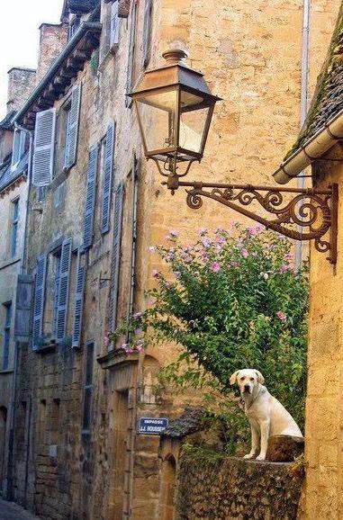 Sarlat la Caneda   Dordogne France - Cris Figueired♥