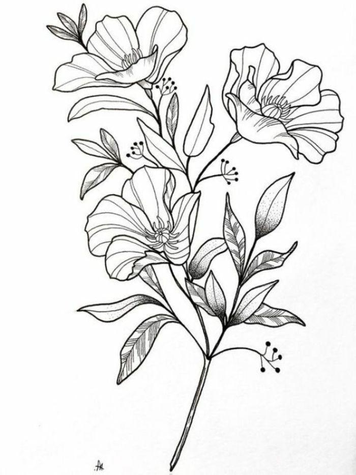 1001 Ideas De Dibujos De Flores Faciles Y Bonitos Flores Dibujadas A Lapiz Dibujos De Flores Dibujos