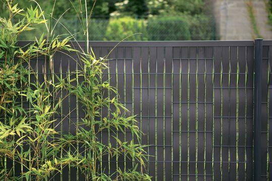 La finesse et l'élégance d'un grillage noir - Panneau, claustra : quelle clôture pour mon jardin des voisins ? - CôtéMaison.fr