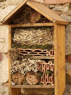 Bees:  Building supplies for #bees, birds, butterflies, and ladybirds.